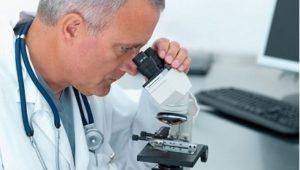 Какой должна быть норма лейкоцитов и эритроцитов в моче