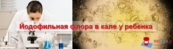 йодофильная флора в кале у ребенка